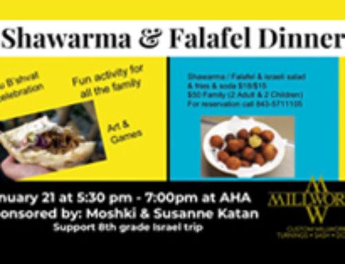 Shawarma and Falafel Dinner